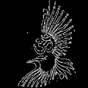 Raven Yoga Logo